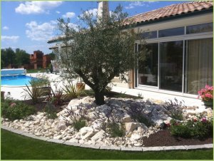 Beautiful landscaped garden by the beaches of the Marble carpet pool